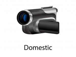Domestic new